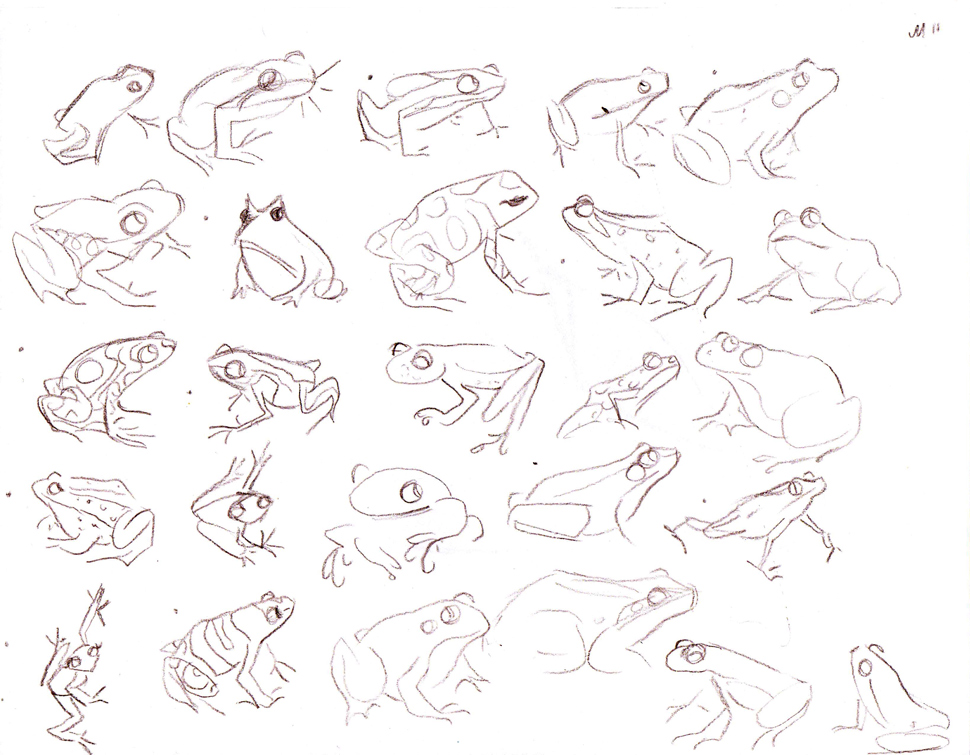 Frog Sketch Drawing Frogsketchb1w.jpg